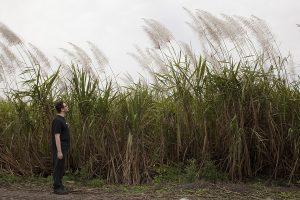 "Sofia Valiente, ""Ben with sugarcane"", 2014, Inkjet print on Canson Baryta paper, © Sofia Valiente"
